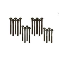 DA2006 - Cylinder Head Bolt Set for 200TDI - Defender, Discovery and Range Rover Sport
